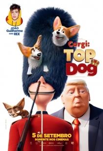 Corgi: Top Dog